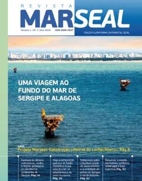 Revista Marseal 1_capa